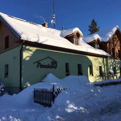 Železná Ruda, Plzeňský kraj: Penzion 103