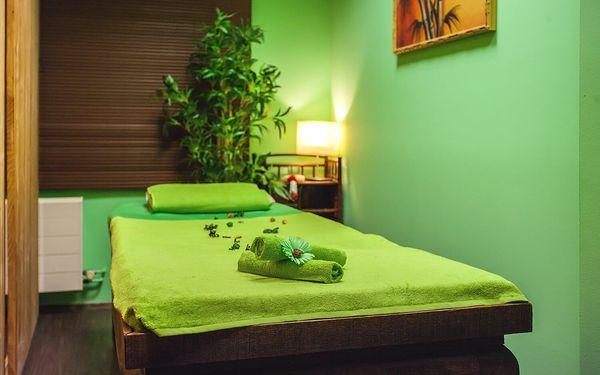 Masáž podle výběru (90 minut) a spa4
