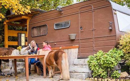 Pobyt na ranči v karavanu či chatce mezi zvířátky