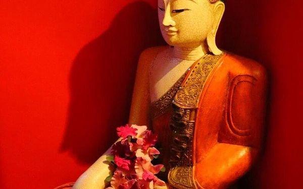 45min. thajská masáž, 30 min. sauny a rybičky3