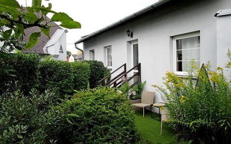Moravskoslezský kraj: Holiday House Smetánek