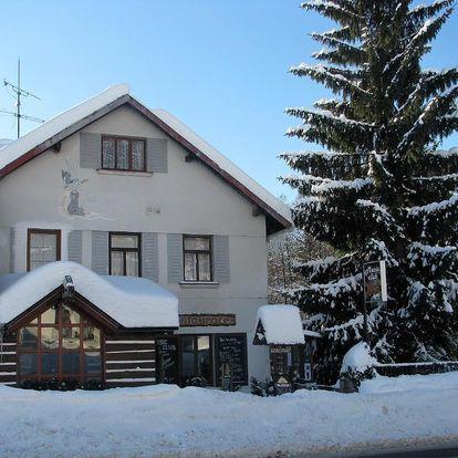 Rokytnice nad Jizerou, Liberecký kraj: Penzion U Zastávky