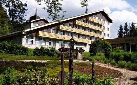 Skvělý wellness pobyt na Šumavě & POLOPENZE + 2 děti zdarma 4 dny / 3 noci, 2 os., polopenze