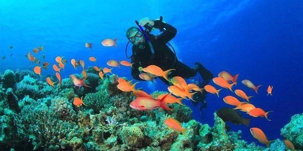 Potápěčský kurz vč. registrace2