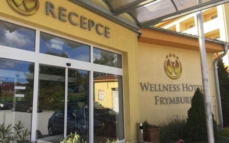 Frymburk, Jihočeský kraj: Wellness & Spa Apartments Lipno - Frymburk