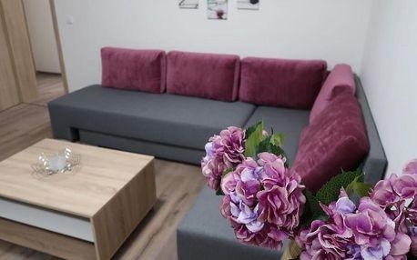 Frymburk, Jihočeský kraj: Private Luxury Apartments