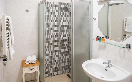 Vysočina: Hotel U Labutě
