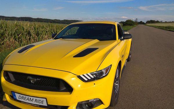 20 minut spolujízdy ve Fordu Mustang GT3