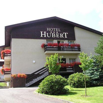Krušné hory: Hotel Hubert