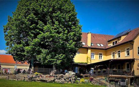 Pohádka u Bojnického zámku pro 2-4: jídlo i láhev vína