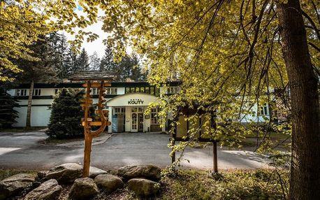 Vysočina: Hotel Kouty