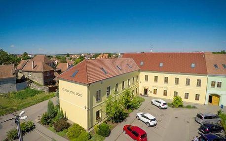 Lednice, Jihomoravský kraj: Relax Hotel Stork