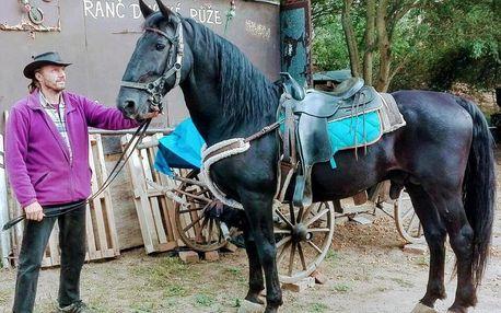 Vyjížďka na koni či jízda kočárem až pro 4 osoby