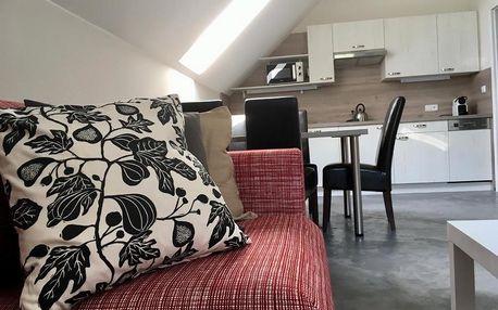 Bedřichov, Liberecký kraj: Apartmány U tří bratrů