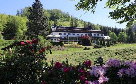 Valašsko: Hotel Troyer