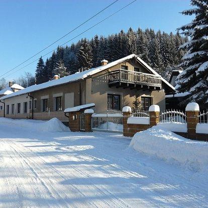 Orlické hory: Apartmány pod Suchým Vrchem