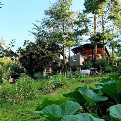 Středočeský kraj: Birch cottage