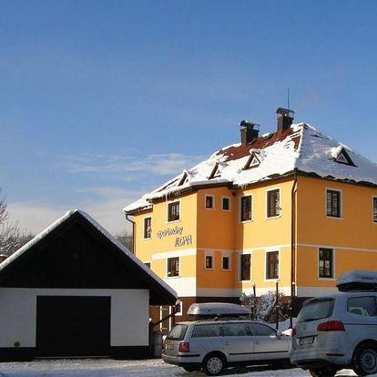 Rokytnice nad Jizerou, Liberecký kraj: Apartmány Ilona