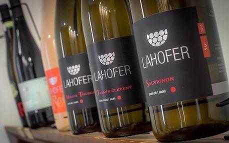 Degustace osmi vzorků vín ve velkém sklepě Hotelu Lahofer