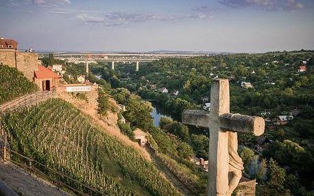 Degustace šesti vzorků vín Lahofer na Rajské vinici