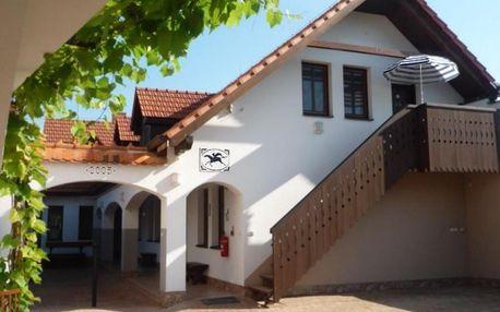 Jižní Morava: Pension Černý jezdec