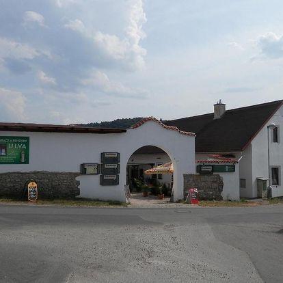 Střední Čechy: Restaurace a penzion U Lva