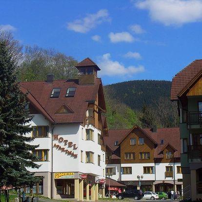 Rokytnice nad Jizerou, Liberecký kraj: Apartmány Rokytnice