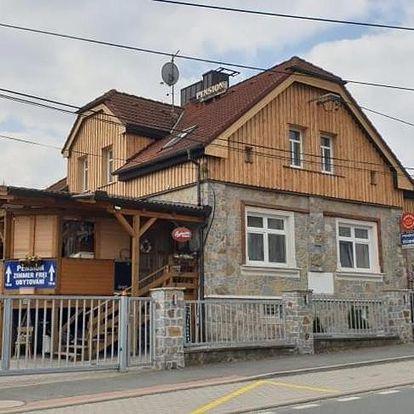 Plzeňsko: Penzion Milenium