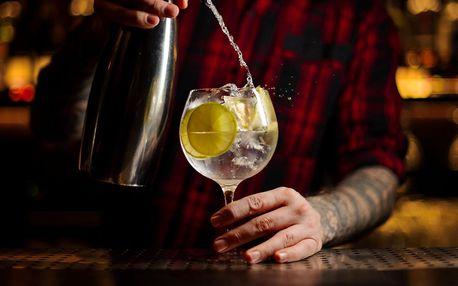 Ginový kurz s ochutnávkou 7 špičkových ginů