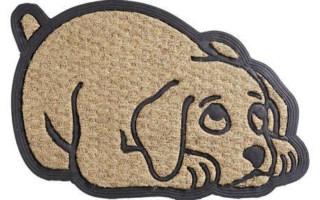 Dveřní Rohožka Cats And Dogs, 40/60 Cm