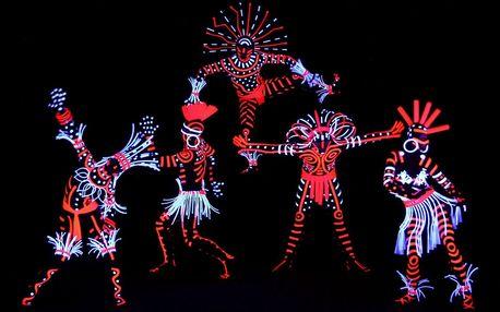 Vstupenky na představení černého Divadla Image