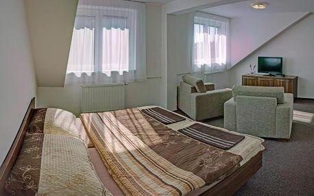 Uherské Hradiště, Zlínský kraj: Penzion Na Dlouhé
