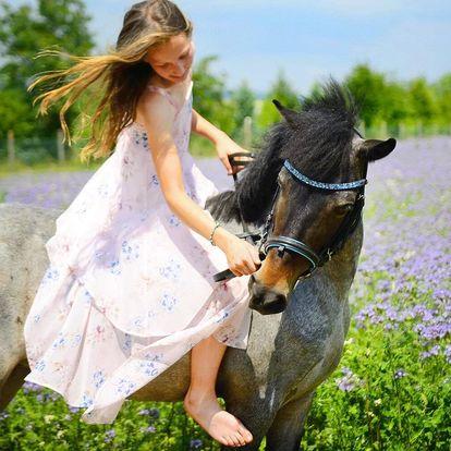 Výuka jízdy na koních s trenérem: až 10 hod. v sedle