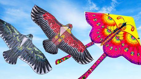 Velcí létající draci: motýl či orel