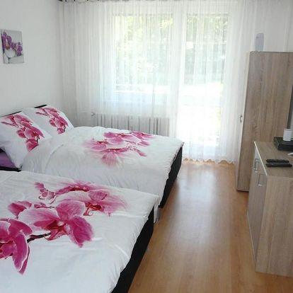 Olomouc, Olomoucký kraj: Apartment Fialka