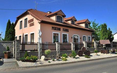 Jižní Morava: Penzion Farma