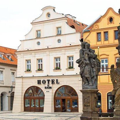 Žatec, Ústecký kraj: Hotel U Hada Žatec