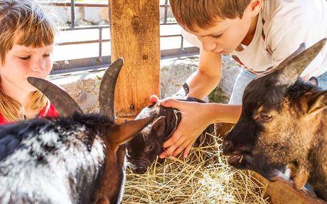 S rodinou na farmu: lamy, klokani a další zvířátka