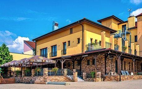 Slovácko: Pobyt v Bzenci nedaleko zámku v Hotelu Lidový dům *** s láhví vína i ochutnávkou vín + polopenze