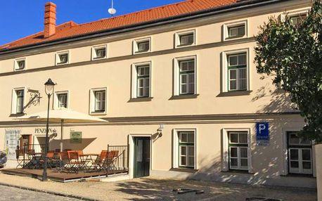 Pobyt v historickém centru Znojma s jídlem i vstupy