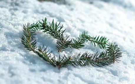 Zimní radovánky v Harrachově s polopenzí, wellness a Harrachov Card