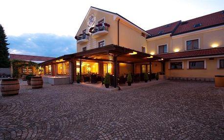 Jižní Morava: Hotel Princess