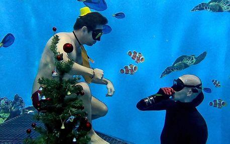Kurz freedivingu pro jednoho nebo i celou rodinu