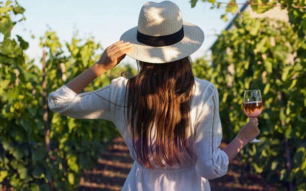 Vinobraní 2021: Kam na sklenku vína?