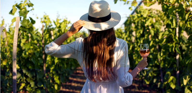 Vinobraní 2021: Průvodce slavnostmi vína