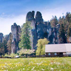 Letní dovolená v českých luzích a hájích